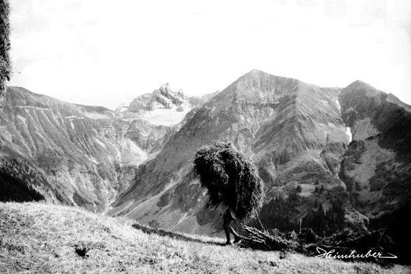 Heuernte im Traufbachtal