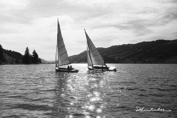Segelboote auf dem Alpsee