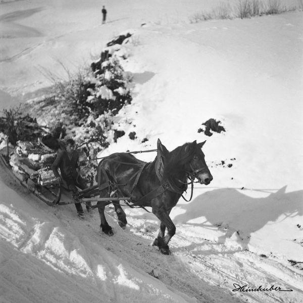 Holzlieferung im Winter