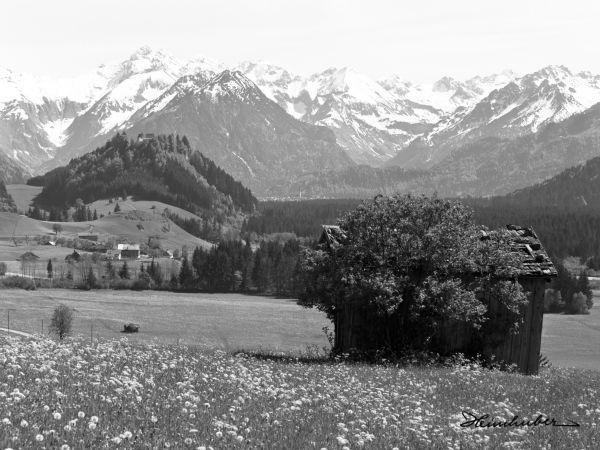 Allgäuer Bergwelt im Frühling