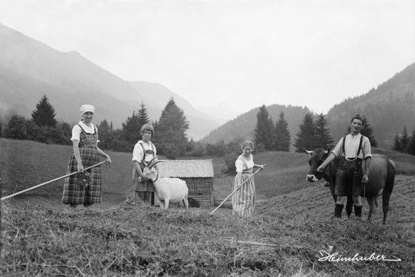 Feldarbeit bei Kornau