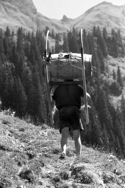 Auf zur Alpe III